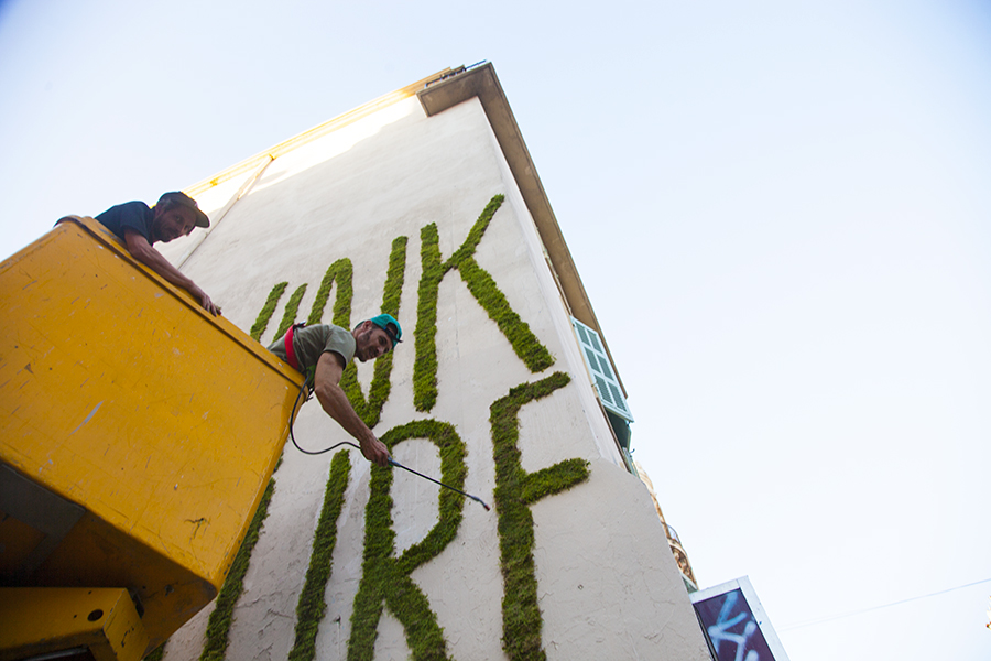Monsieur Plant © 2015 • THINK NATURE • Street Art Festival #2 • Marseille