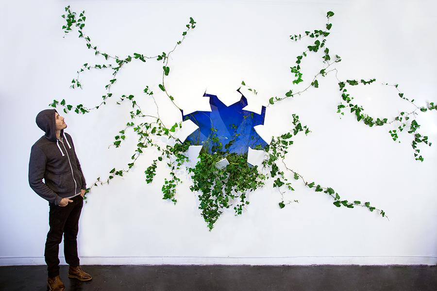 Monsieur Plant © 2016 • Broken Wall • SEIZE Gallery • Marseille