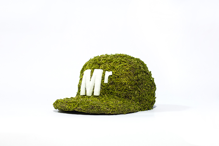 Monsieur Plant © 2016 • Moss Collection • Cap