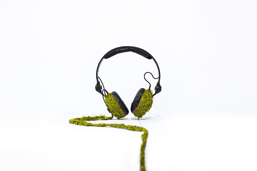 Monsieur Plant © 2016 • Moss Collection • Headphones