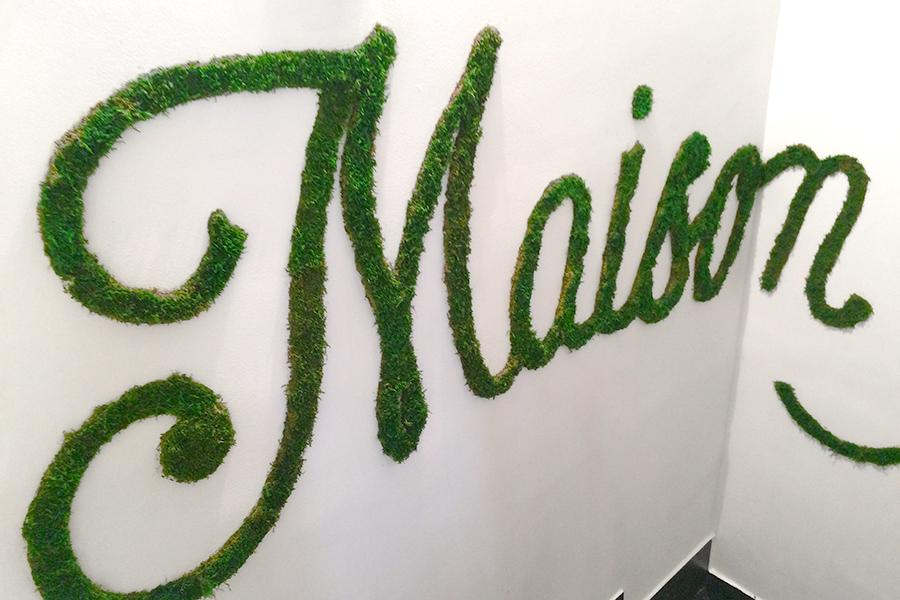 Monsieur Plant © 2016 • Vegetal Typography • Collab / Florian Schneider + Monsieur Plant • La Maison Muller / splendens Factory