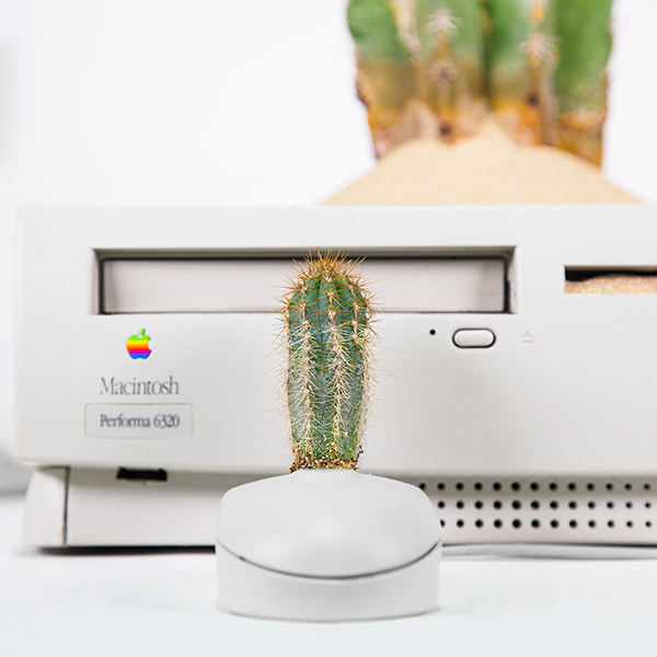 Monsieur Plant © 2017 • Plant your Mac! • Macactus • Power Macintosh / 1996 • Isolatocereus dumortieri